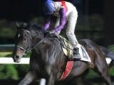 【佐賀・雷山賞】グレイトパールが移籍2戦目も断然人気に応え9馬身差圧勝!/地方競馬レース結果