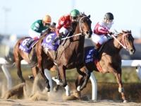 【浦和・ニューイヤーC】地元のトーセンガーネットが早めに前を捕え重賞初V/地方競馬レース結果