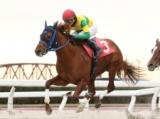 【笠松・白銀争覇】地元のストーミーワンダーが人気に応え重賞初V/地方競馬レース結果