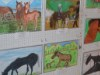 小学生が応募した「馬の絵コンテスト」 入賞12作品の展示がスタート
