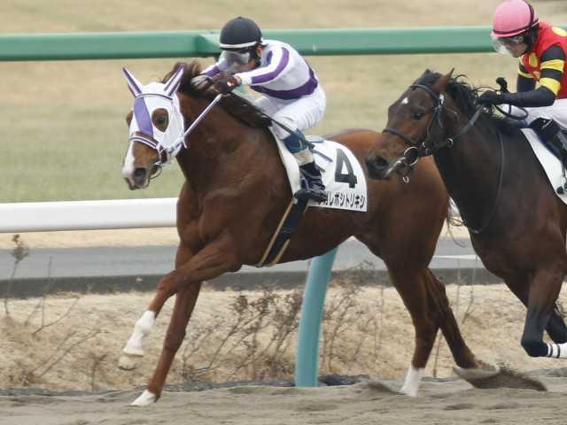 原田和真騎手騎乗の12番人気ナガレボシトリキシが新馬勝ち(撮影:下野雄規)