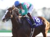 【川崎記念】(30日、川崎) JRA所属の出走予定馬および補欠馬について