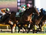 【JRA】ステファノス引退、ニュージーランドで種牡馬に