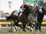 【AJCC】菊花賞馬フィエールマンが予想1番人気に/JRA重賞予想オッズ