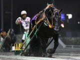 【NARグランプリ2018】ばんえい最優秀馬はオレノココロ 重賞5勝で2年連続受賞