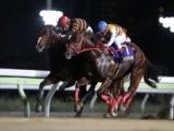 【NARグランプリ2018】年度代表馬はキタサンミカヅキ! 東京盃制覇など年間通して安定