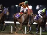 【NARグランプリ2018】2歳最優秀牝馬はアークヴィグラス 北海道と南関東で重賞5連勝