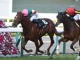 【JRA】シュペルミエールが屈腱炎再発のため引退、日経新春杯3着馬
