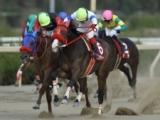 【園田クイーンセレクション】アリアナティーが不利をはね除け重賞初V/地方競馬レース結果