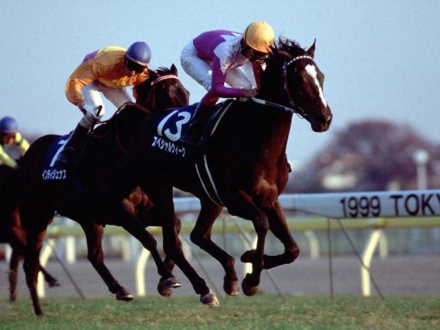 スペシャルウィークは1999年にGI3勝を挙げたが、年度代表馬受賞とはならなかった(c)netkeiba.com、撮影:下野雄規