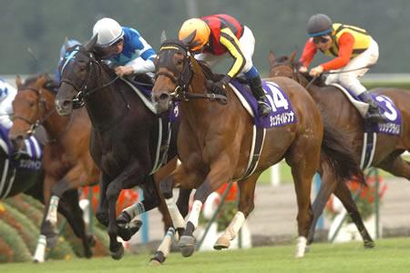 ジェンティルドンナがヴィルシーナとの叩き合いを制し史上4頭目の牝馬三冠を達成/秋華賞
