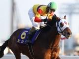 【川崎記念全着順】ミツバ&和田竜二騎手がV 2着ケイティブレイブ、3着オールブラッシュ/地方競馬レース結果