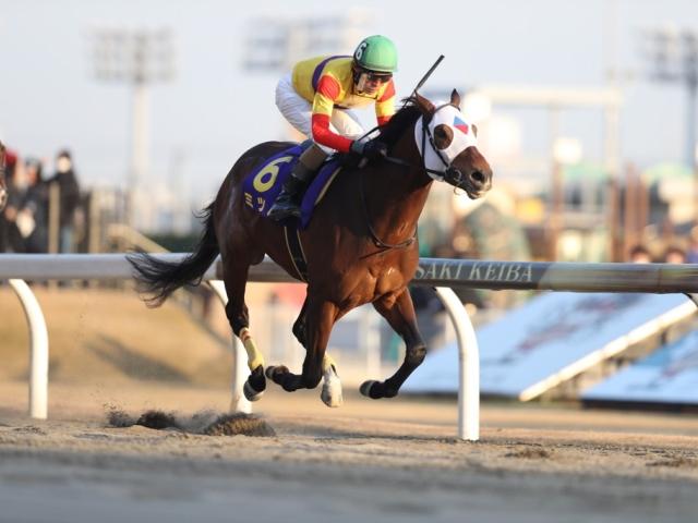 7歳馬ミツバが待望のJpnI初制覇、和田騎手と約4年ぶりのコンビで(撮影:高橋正和)