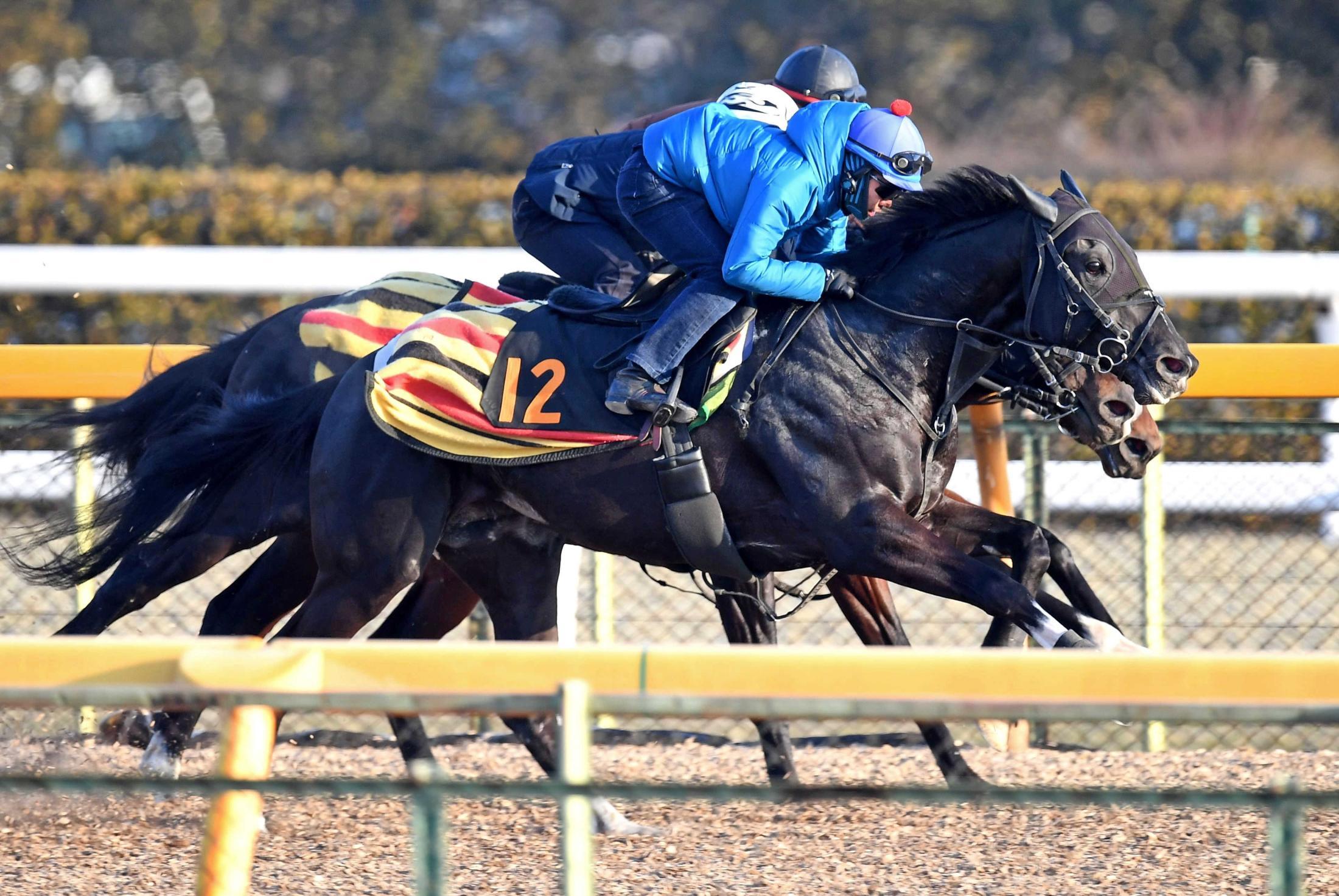 初のタイトルへ気合のこもった併せ馬を行ったアガラス(手前)=撮影・園田高夫