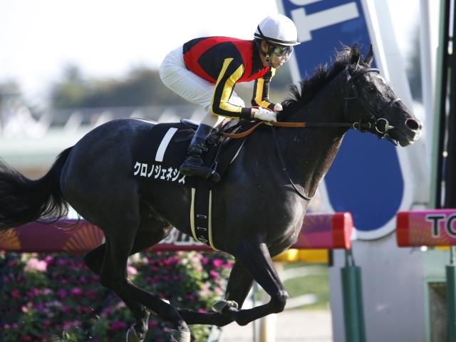 阪神JFの2・3着馬が上位人気に(撮影:下野雄規)