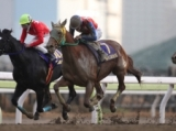 【大井・金盃】船橋のサウンドトゥルーが捻じ伏せてV!/地方競馬レース結果