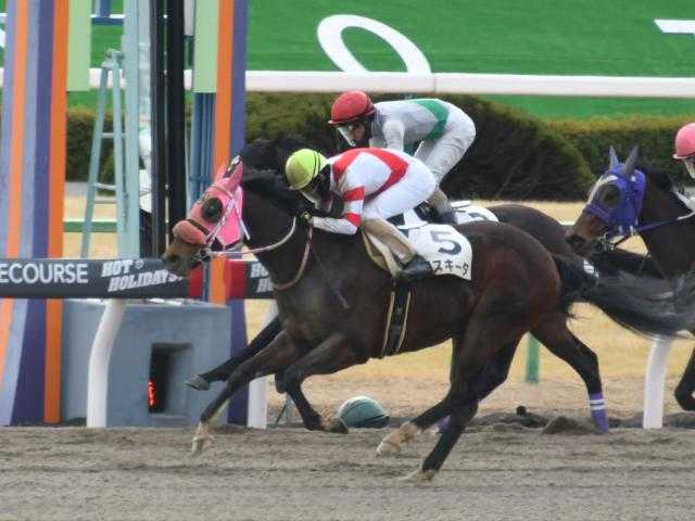 松山弘平騎手騎乗の6番人気メスキータが勝利(c)netkeiba.com