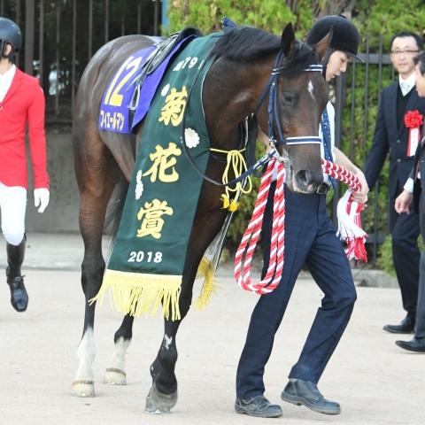 菊花賞馬フィエールマンの母リュヌドールは、2004年のリディアテシオ賞勝ち馬
