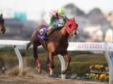 【浦和・ユングフラウ賞】7番人気のポッドギルが逃げ切りV/地方競馬レース結果