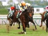 【地方競馬】ガリバルディが金沢競馬に移籍、2016年中京記念覇者