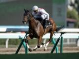 【次走】ミッキーチャームは川田将雅騎手で中山牝馬Sへ