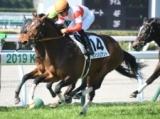 【小倉5R新馬戦】ミッキーチャームの全弟ダノンバリアントが差し切りV/JRAレース結果