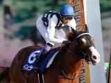 【JRA・WIN5】全レース上位人気馬が勝利、配当は5万7540円