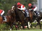 【中山記念】ディアドラ、スワーヴリチャードらGI馬が5頭参戦/JRAレースの見どころ