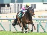 【阪急杯】4歳馬ミスターメロディが予想1番人気に 連覇を狙うダイアナヘイローが続く/JRA重賞予想オッズ
