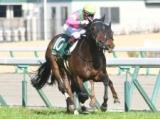 【阪急杯】ミスターメロディが重賞2勝目を狙う/JRAレースの見どころ