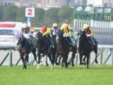 【次走】小倉大賞典で激走3着のサイモンラムセスは大阪城Sへ