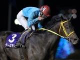 【船橋・報知グランプリC】タービランス重賞4勝目、森泰斗騎手「本当に思い入れの強い馬なので、超嬉しいです」