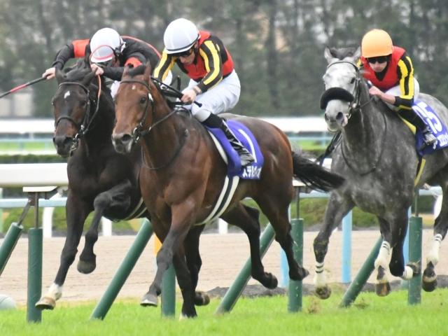 ステルヴィオなど、GI馬5頭が出走する中山記念