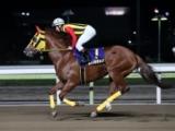 【大井・フジノウェーブ記念】昨年の覇者はリッカルド 東京スプリントへの切符を掴むのは/地方競馬見どころ