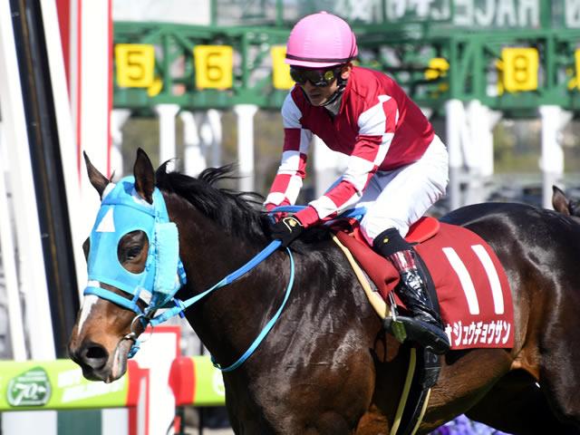 石神深一騎手騎乗のオジュウチョウサンが阪神スプリングジャンプを優勝。これで障害競走では10連勝となった(C)netkeiba.com