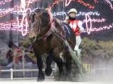 【ばんえい・ポプラ賞】メジロゴーリキが断然人気に応え重賞連勝/地方競馬レース結果