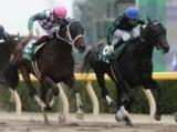 【名古屋大賞典】グリムは8枠12番、ヒラボクラターシュは2枠2番/地方競馬枠順確定