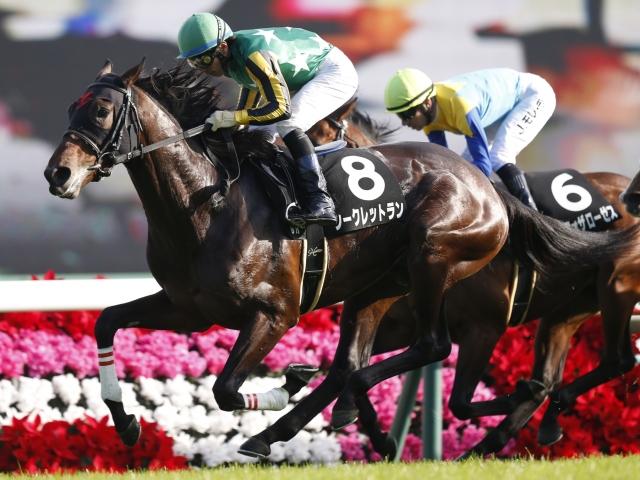 今の馬場はシークレットランにとっての「旬」だといえる(c)netkeiba.com、撮影:下野雄規