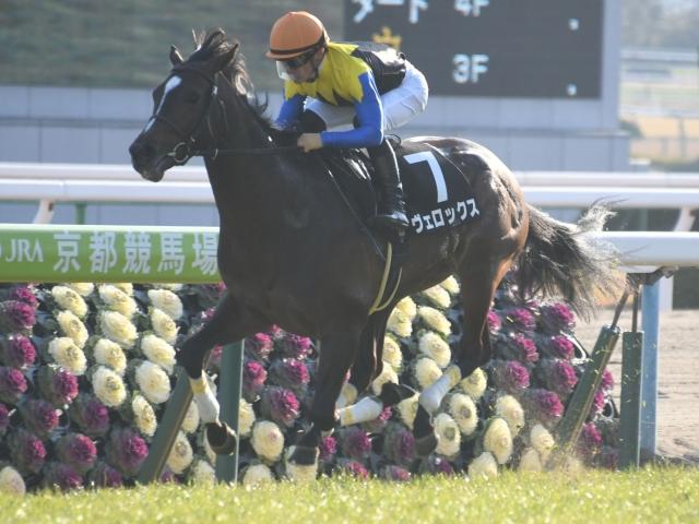 ヴェロックスはリーディングの川田騎手が騎乗する