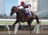 【大井・京浜盃】クラシック戦線を占う重要レース/レースの見どころ(地方競馬)