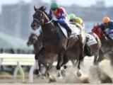 【大井・隅田川OP】ハッピースプリントが2015年以来の南関東勝利! 重賞級メンバーの一戦制す/地方競馬レース結果