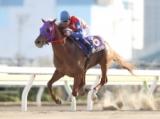 【大井・京浜盃】ステッペンウルフが3連勝で重賞初V/地方競馬レース結果