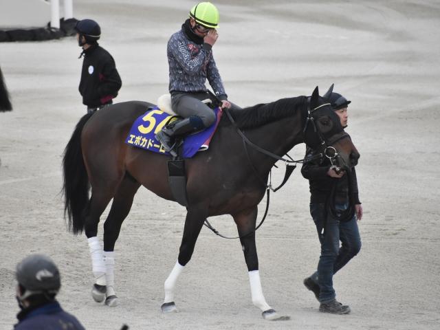 さすがは皐月賞馬といった走りをみせたエポカドーロ(撮影:井内利彰)