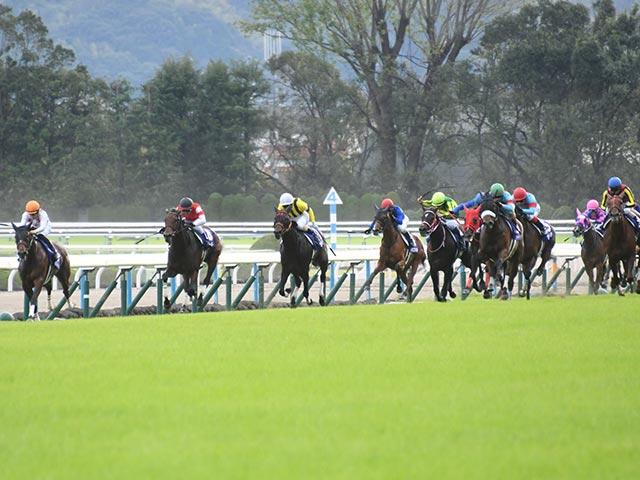 ラッキーライラック、ミッキーチャームなど強豪4歳馬が出走予定(写真は2018年秋華賞)