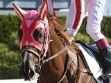 【海外競馬】マスターフェンサー、ケンタッキーダービーの鞍上はルパルー騎手