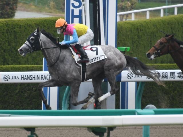 吉田隼人騎手騎乗の2番人気ハヤブサナンデクンが勝利(c)netkeiba.com