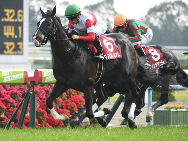 川田将雅騎手騎乗のダノンプレミアムが快勝