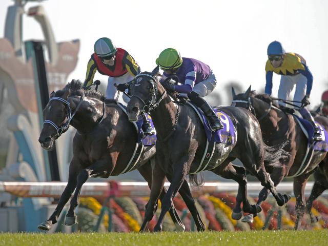 昨年の菊花賞1着、2着馬はともにプリンスリーギフトの血を引いており、京都の外回りコースを得意とする血統である可能性が高い。【netkeiba.com】