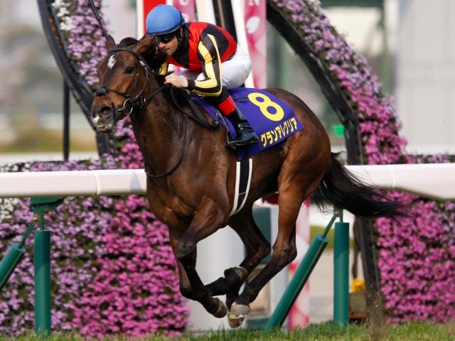 能力は一枚上だと感じさせる桜花賞馬グランアレグリア