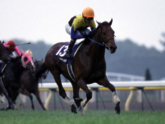 NHKマイルC】競馬ファンが選ぶ「歴代最強のNHKマイルカップ馬」は ...